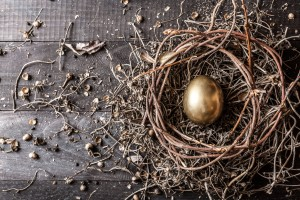 Nest with Gold Egg